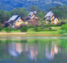 Bình An Village Resort Đà Lạt Bình An Village Resort Đà Lạt