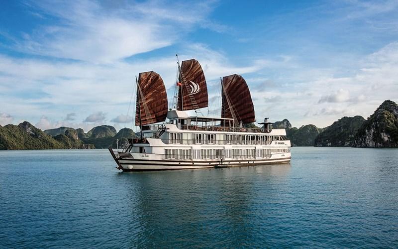 Du thuyền Pelican