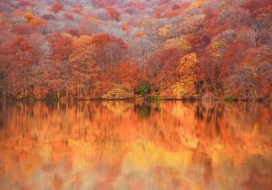 Hồ-Tsuta-Numa-300x210.jpg