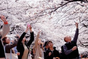 công viên Ueno mùa thu