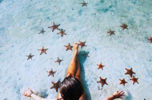 sao biển rạch vẹm phú quốc