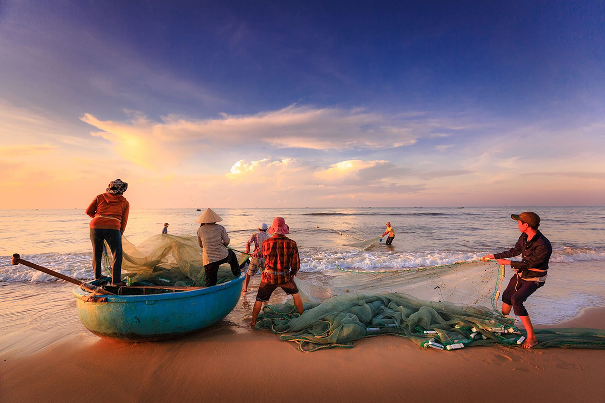 Làng nghề nước mắm Nam Ô