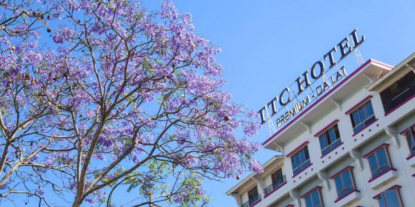 TTC Đà Lạt