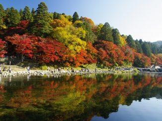 Tour Nhật Bản Korankei