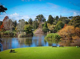 Vườn Thực vật Hoàng gia Melbourne