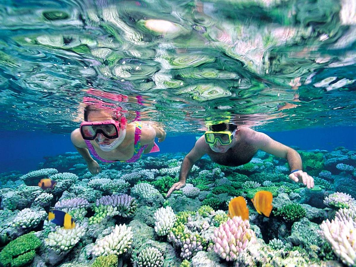 The best places to go diving in Vietnam - Fantasea Travel