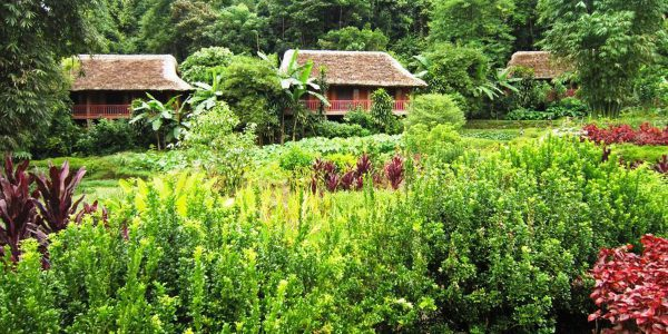 Ecolodge Panhou Village 1