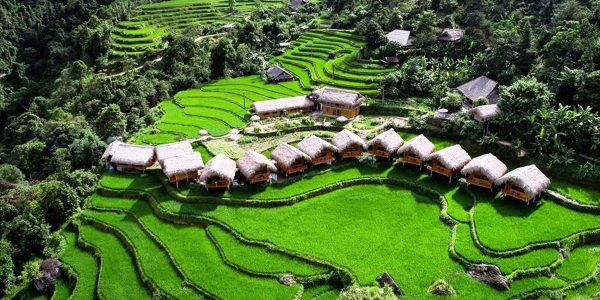 Hoàng Su Phì Lodge 5