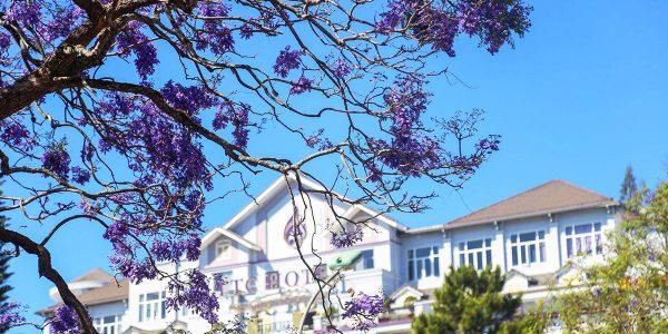 Khách sạn TTC Ngọc Lan 9