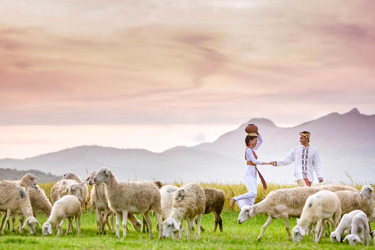 ng Cừu An Hòa 3