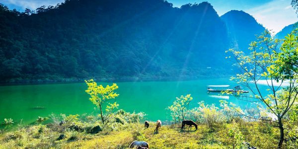 Hồ Ba Bể1